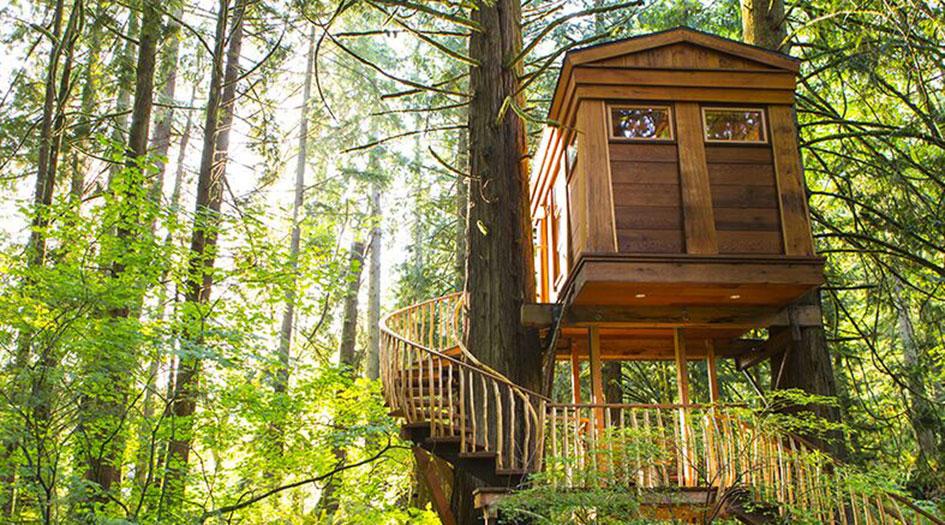 Dormir dans les arbres autour du monde…